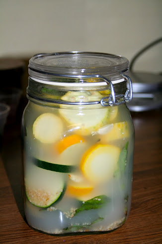 You wouldn't believe how easy it is to make lacto-fermented summer squash and zucchini. Here are 2 simple recipes.