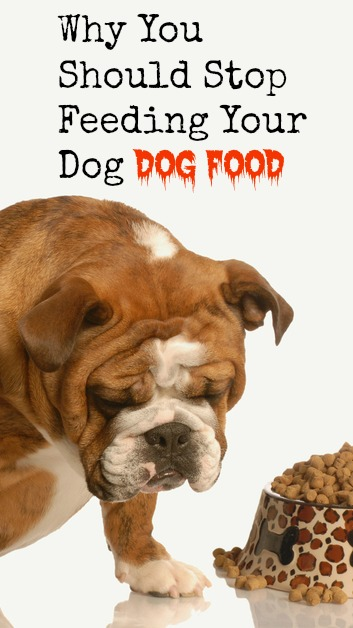 The parallels between modern dog food and human food are eerily similar. Learn the truth about commercial dog food and how to feed your dog real dog food.