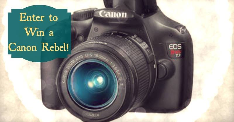 canon rebel meme