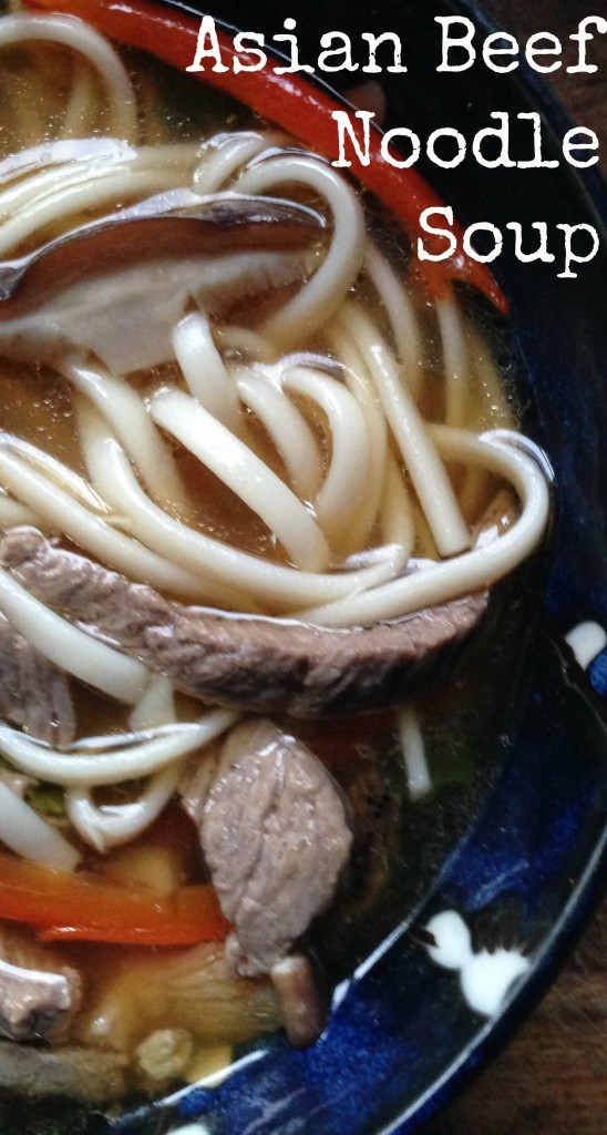 When I traveled through Asia I fell in love with the incredible simplicity and flavor of noodle soups. This Asian beef noodle soup certainly fits the bill.