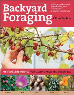 Backyard Foraging book