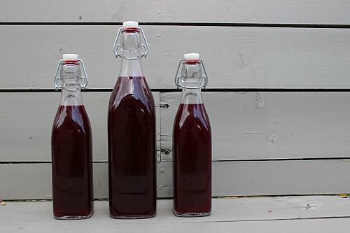 Lacto-fermented blueberry soda is not only easy to make at home, it's also a healthful alternative to sugar and chemical-filled commercial sodas.