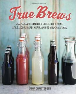 resource with recipes for lacto-fermented sodas