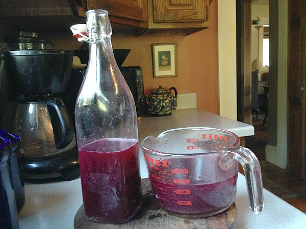 transferring concord grape soda to bottles