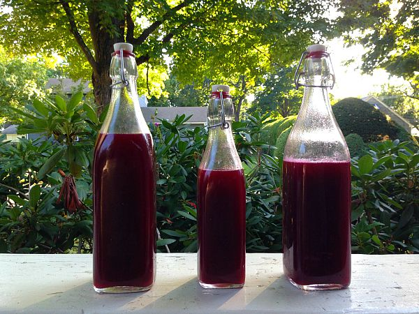 concord grape soda in bottles