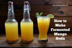 fermented mango soda