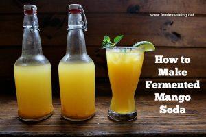 How to Make Fermented Mango Soda