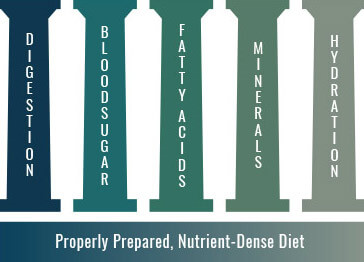 nutritional therapy practitioner foundations