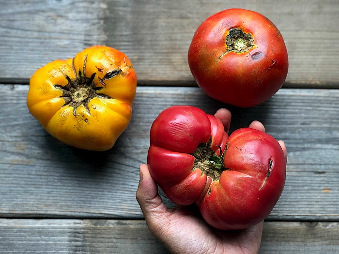 heirloom tomatoes for summer tomato soup recipe