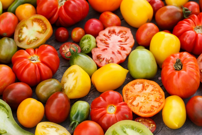 colorful local tomatoes