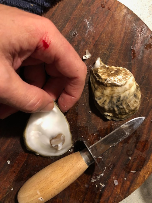 oyster shucking mishap for traditional oyster stew recipe