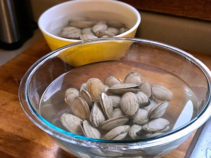 steamer clams soaking