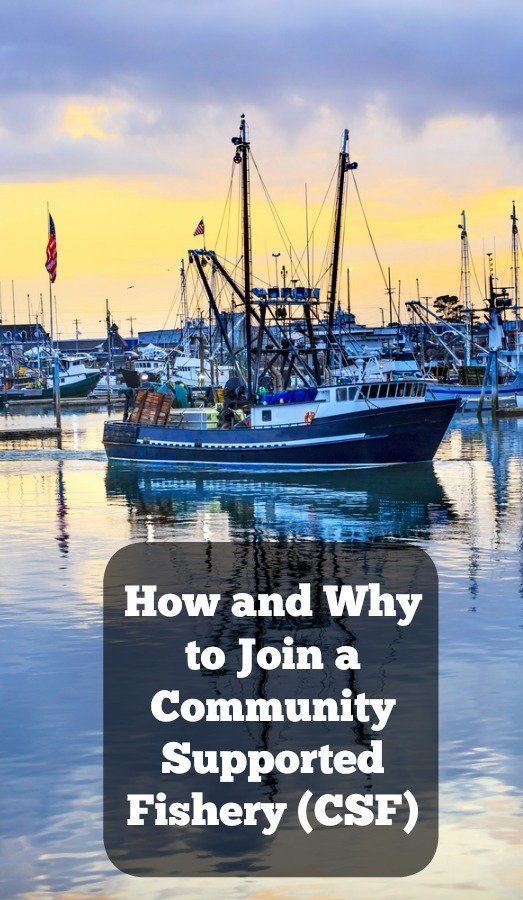 Why and How to Join Community Supported Fisheries
