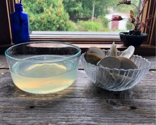 freshly made clam juice in kitchen